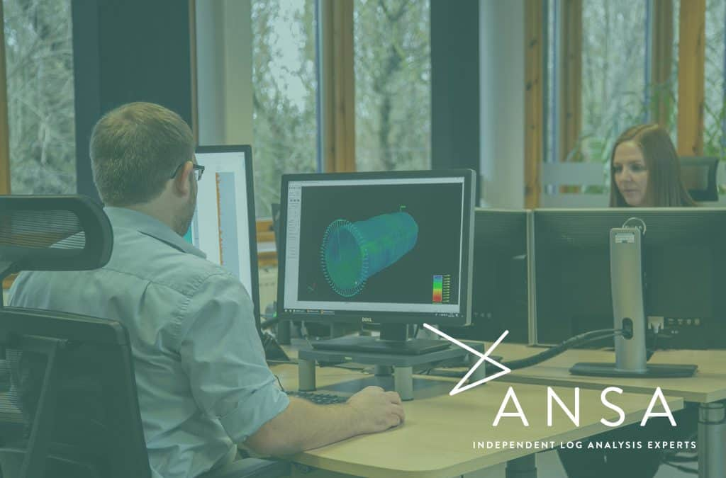 ANSA Independent Log Analysis Experts READ Cased Hole